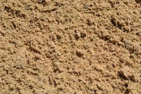 Sandy beach Stock fotó
