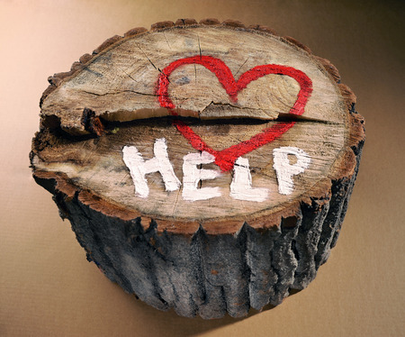 Help to protect nature, stop deforestation  Red heart and the word  help  painted on a tree trunk
