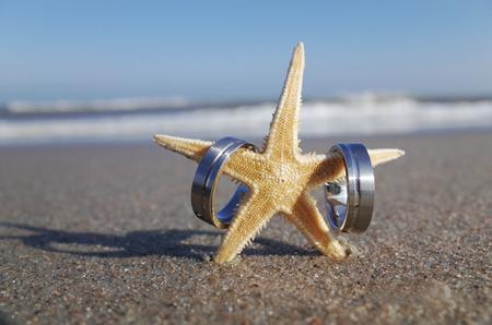 anillos de boda: Estrella de mar en la playa con los anillos de boda