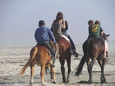 Horse Backriding Standard-Bild - 882372