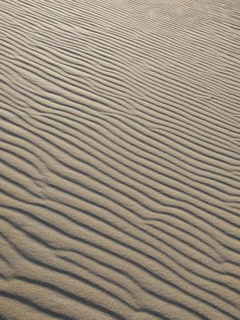 Rippled Sand Hill