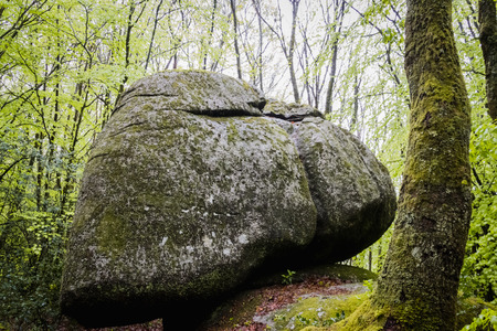 The rock of the wolf in the forest of Sauviat in a French countryside