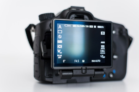 Back of a pro DSLR with tilt screen
