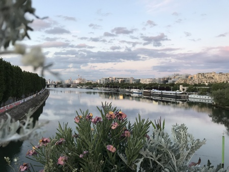 Springtime over the Seine river in Paris at evening