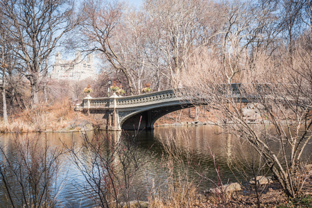 Lake Bow Bridge landscape through the leafless branches of late winter in NY