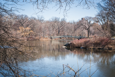Lake Central Park landscape through the leafless branches of late winter in NYC 写真素材