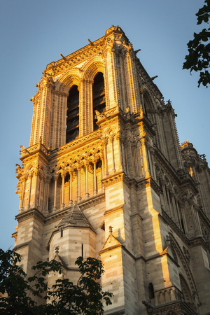 Sunrise in Paris on one of the majestic columns of Notre Dame Cathedral of Paris 写真素材
