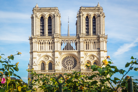 The beautiful Notre Dame of Paris cathedral during a beautiful sunny summer day in France - Landscape