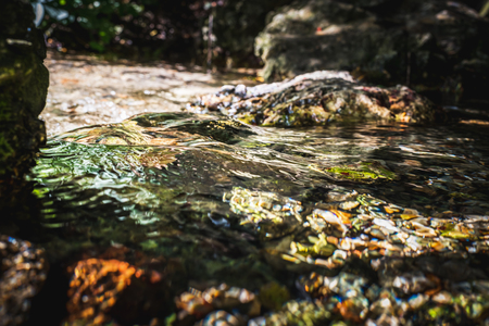 Stream of natural water source at its starting point among rocks in summer Imagens - 124986844