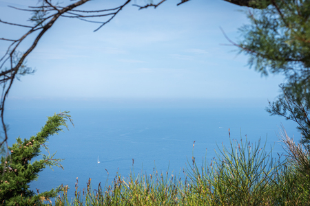 Summer landscape with the view of the sea and a blue sky from a high point of view through the bushes 写真素材