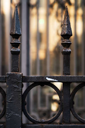 Close-up of a wrought iron entrance gate in Paris