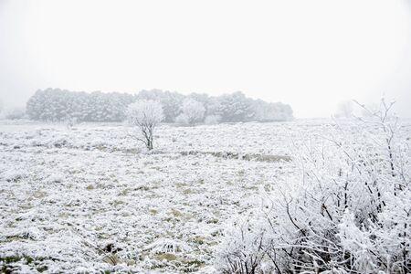 winter season snow field landscape Stock Photo