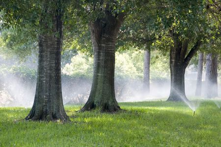 Irrigation system spraying grass and southern oak trees Stock Photo