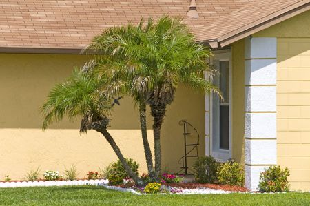Beautiful palm tree and flowers line the entrance of a block home Stock Photo