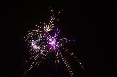 display: Fireworks display in multiple colors
