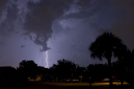 Electrical storm at night near homes with a palm tree in foreground photo