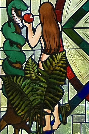 Eve tempted by the serpent by eating the forbidden fruit stained glass window segment