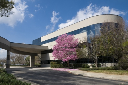 health care facility: Hospital drive through with pink tree at entrance in springtime