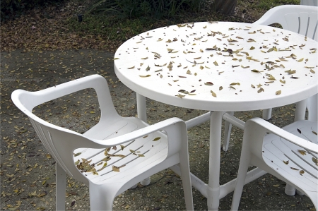 garden bench: Abandon table and chairs in the fall with leaves