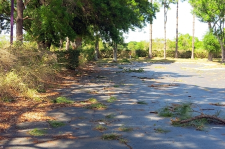 high winds: Storm debris left after high winds and heavy rain