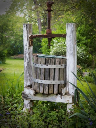 Antique wooden wine press left in garden surrounded by flowers