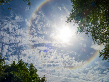 natural phenomena: Large colorful rainbow Ring around the sun caused by high altitude Ice Crystals shot through Trees