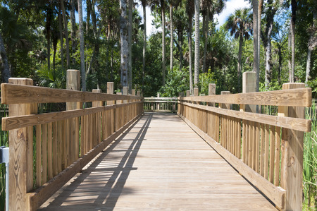 elevated walkway: Elevated wooden walkway bridge over swamps in heavy wooded area