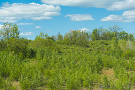 Beautiful green mountains and valleys in the springtime with partly cloudy blue skies Stock Photo