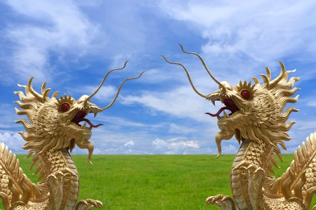Golden dragon with fields and nice sky background   photo