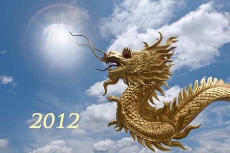 2012 year of dragon photo