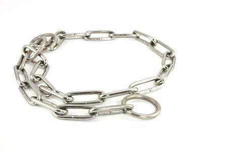 Steel dog collar  Steel dog collar... photo