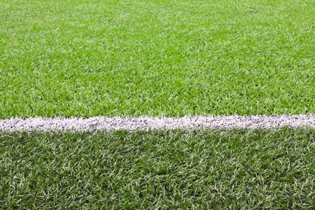 white line on asoccer field grass  photo