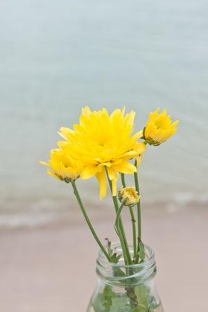 yellow flower over sea  photo