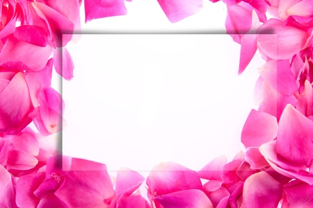artwork of  picture frame. Stock Photo - 11707056