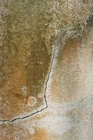 craked: texture of craked on cement wall  background