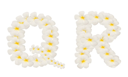 alphabet created from  white tropical flower,Frangipani(plumeria) isolated,QR photo