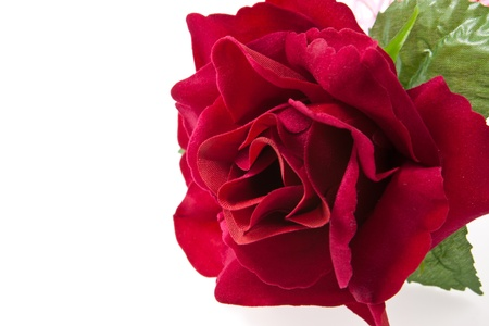 closeup perfect red rose artificial isolated on white photo
