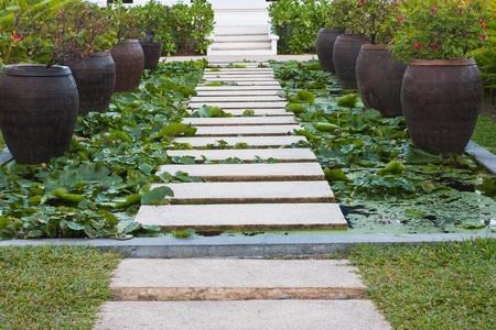 alley in tropical garden,Thailand