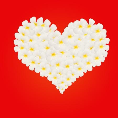 plumeria flower in heart shape on red wallpaper Stock Photo - 13181269