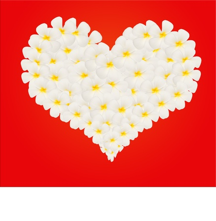plumeria flower in heart shape on red wallpaper photo