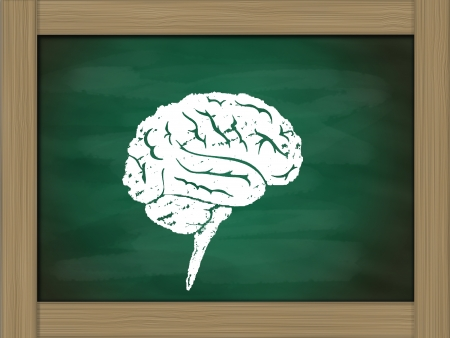 brain icon drawing on green chalkboard photo