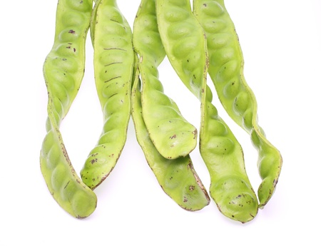 tropical stinking edible beans on white background  Parkia Speciosa  photo