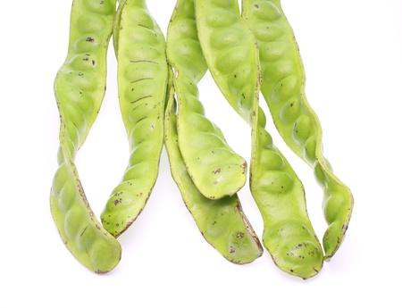 tropical stinking edible beans on white background  Parkia Speciosa Stock Photo - 15169579