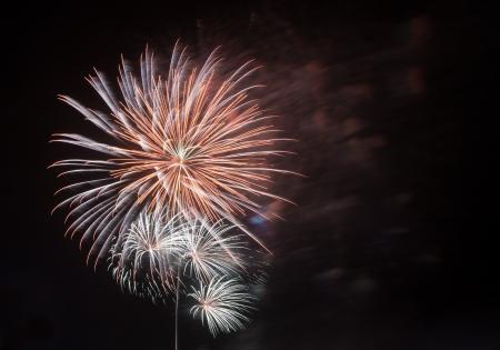 Holiday Celebration Fireworks Display Stock Photo - 16287806