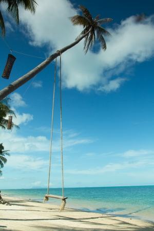 Swing hang from coconut tree over beach,Samui island ,Thailand photo