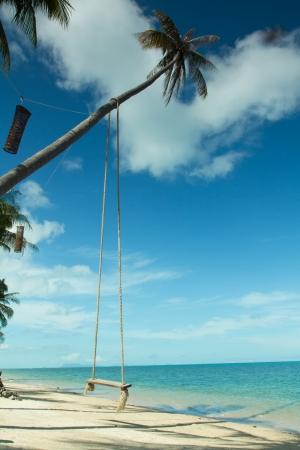 Swing hang from coconut tree over beach,Samui island ,Thailand Stock Photo - 16904199