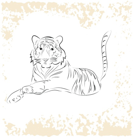 bengals: Big tiger relaxing on grunge background,vector eps10