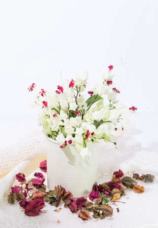 Bleeding-heart flower in vase with dry flower background photo