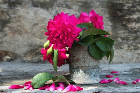 Still life with pink roses flower in silver vase on grunge wooden background photo
