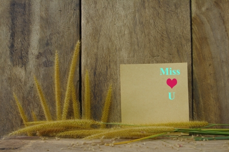Still life with miss you text on paper and foxtail grass on grunge wooden background